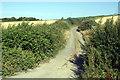 SS2104 : Track near Hele by Pierre Terre