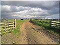NU1213 : Farm road by Walter Baxter