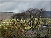 SK1482 : Castleton roofs by Chris Gunns