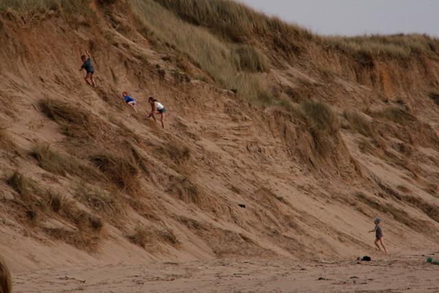 Sand Dunes on Traeth Penrhos