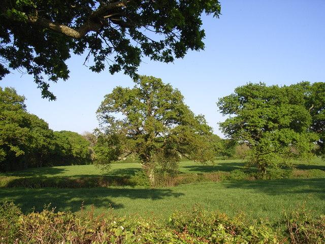 Farmland, Lakegate Lane, Ryme Intrinseca