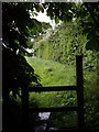 SJ7249 : Shelter from the rain near stile by Ian Bottomley