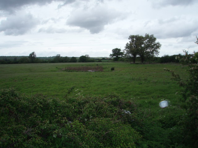 Unused Farmland