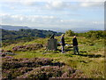 C1119 : On Doon Rock by Chris Gunns