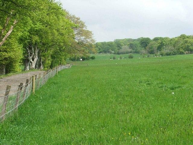 Duncanziemere Farm Driveway.
