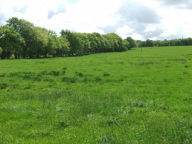 Garlaff Farm near Skares