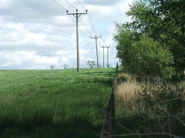 Squint Fence, Squint Poles.