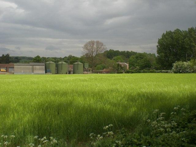 Broomsthorpe Farm