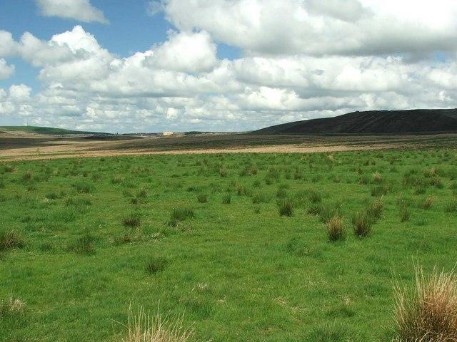 Looking across Watsonburn fields.
