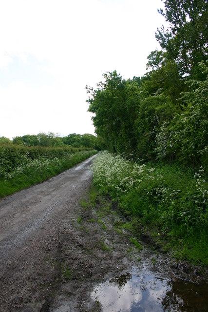 Lane to Lawnhead