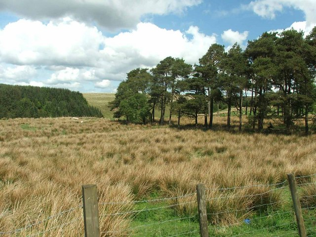 View from Kyle Farm.