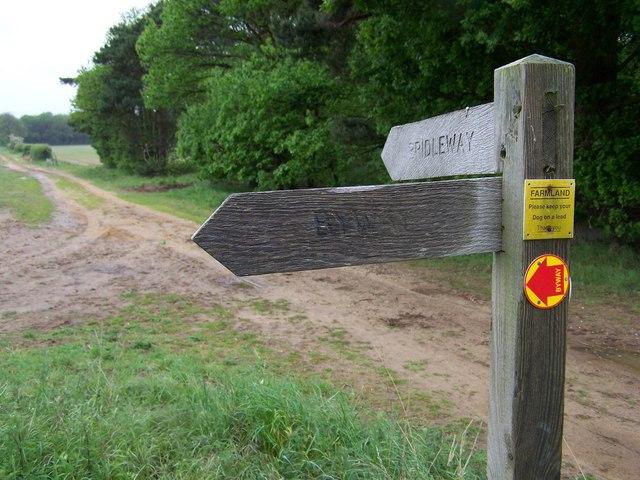 Bridleway & Byway sign