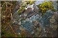 NB9807 : Lichen on Tanera Mòr by Bob Jones
