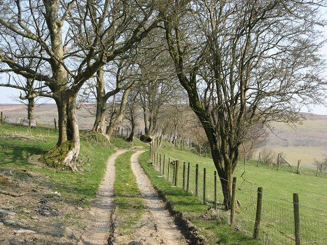 Track, Blaen-heath