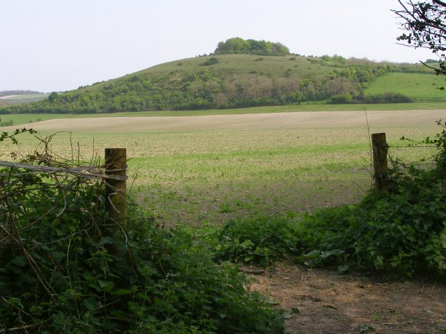 Buxbury Hill from Buxbury Hollow