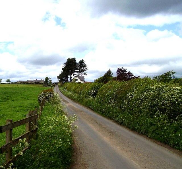 East Heddon
