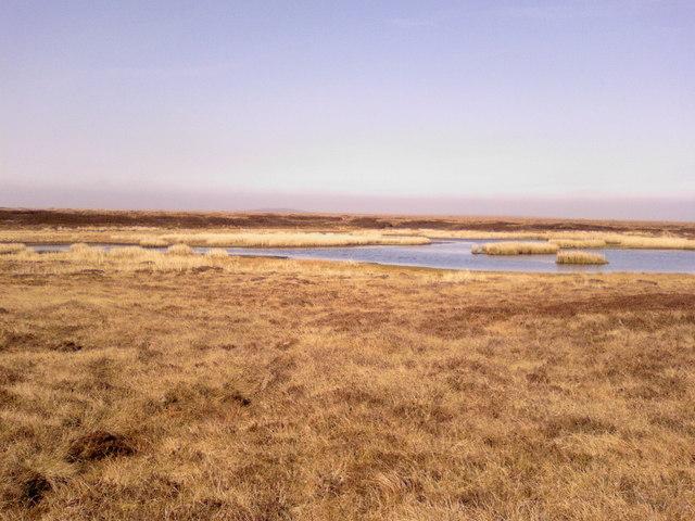Loch of Auckengill