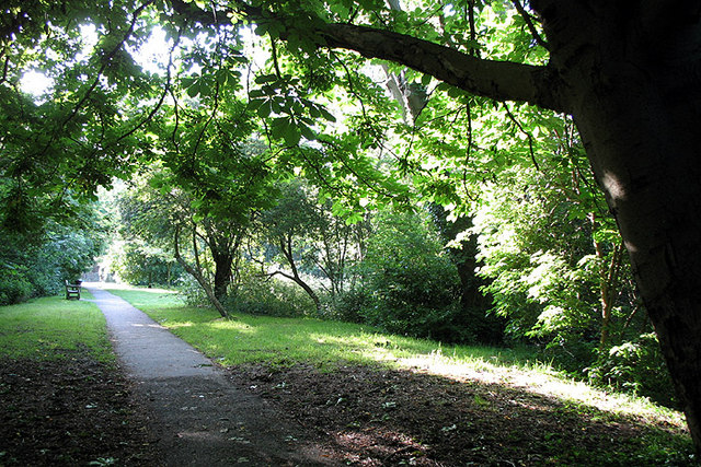 Behind Lyttleton Playing Fields