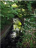 TQ2688 : Mutton Brook by Martin Addison