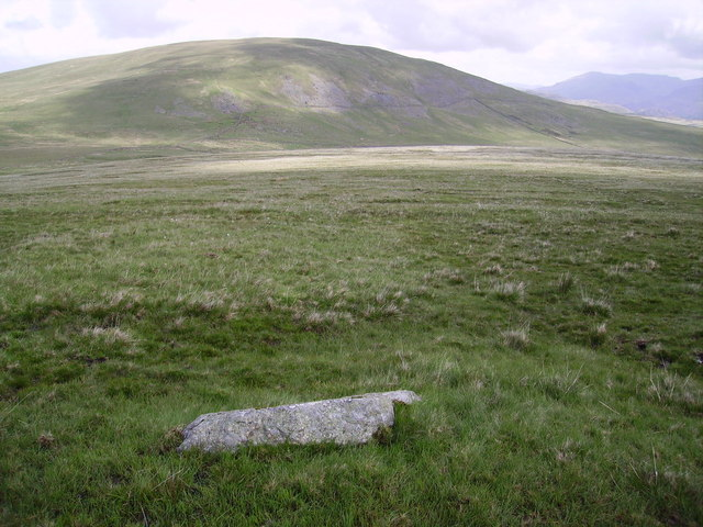 Bigertmire Pasture