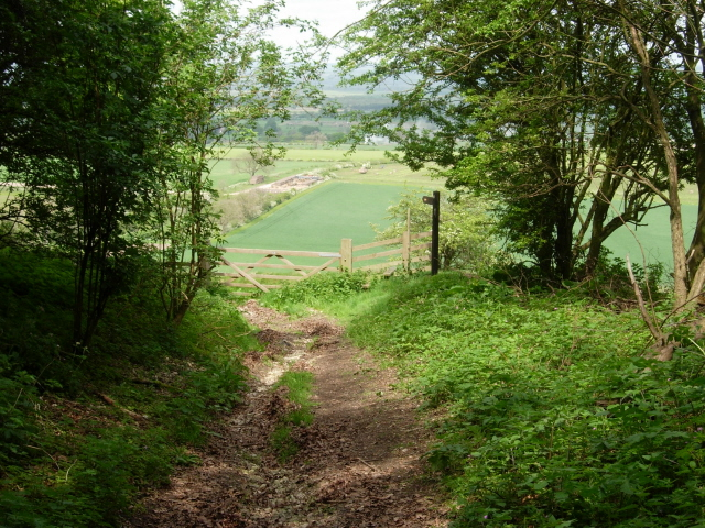 The Wolds Way leaving South Wold Plantation