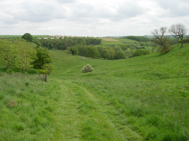 Looking towards where Nine Spring Dale and Duggleby Dale converge