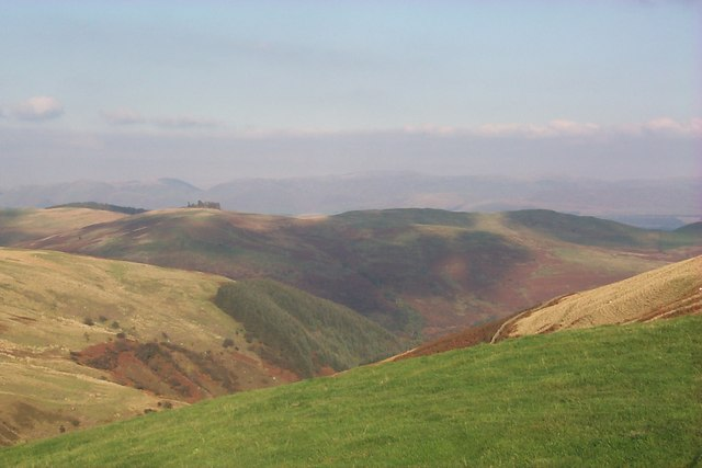 Far Hill and Glendinning Cleuch