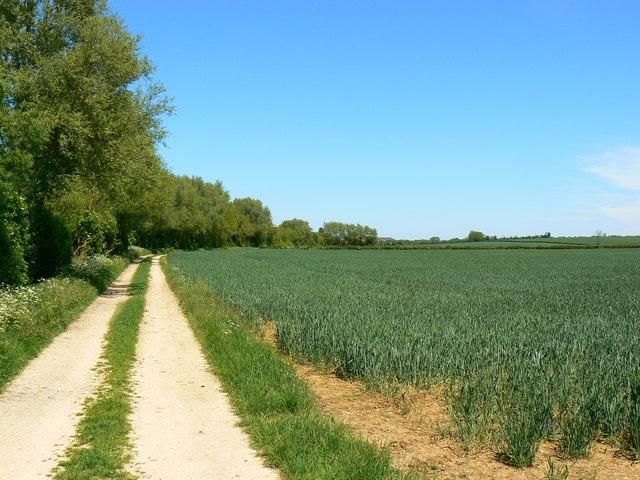 Footpath near Kempsford, Gloucestershire