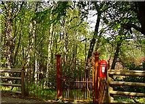 NH5292 : Old Postbox at Gruinards Lodge by Donald H Bain
