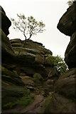 SE2064 : Brimham Rocks by Katy Walters