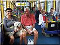 SM9537 : Public transport by ceridwen