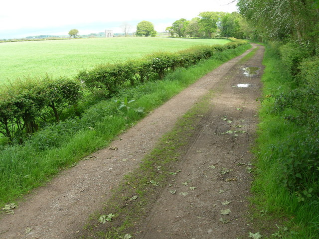 Track leading to Threave Mains