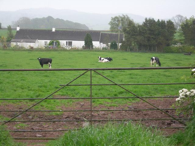 Farmland & cottage near Blackerne