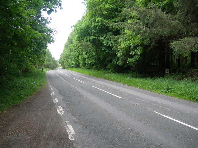 Tree lined stretch of A713