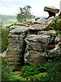 SE2065 : Brimham Rocks by Chris Gunns