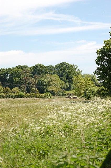 Field at rear of Training Centre.