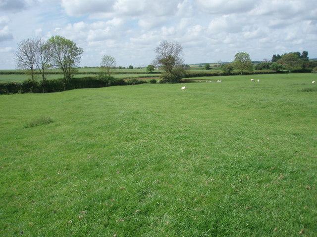 Ancient Farmland