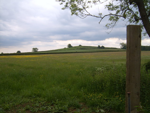 Fields up to Crouch Hill, Highworth