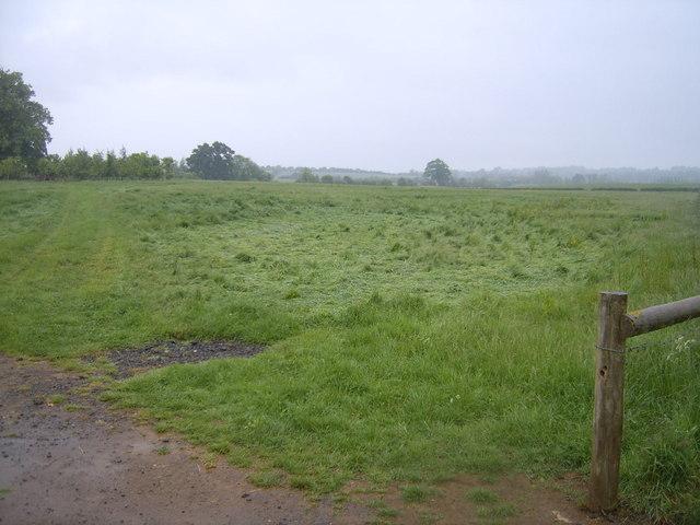 Fields taken from the lane