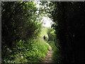SH5729 : Zig Zag path to Harlech Beach by Peter Humphreys