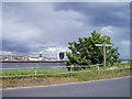 NJ9505 : Coastal footpath by Russell Lett