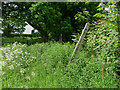 SJ7942 : Another fingerpost by Neil Lewin