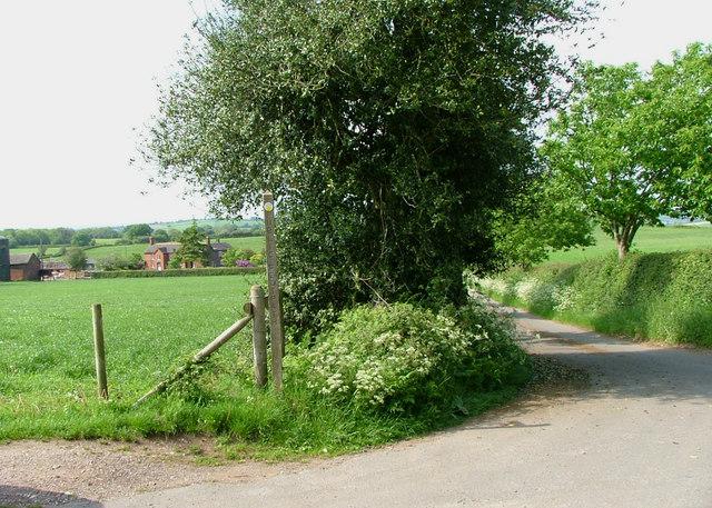 Road to Radwood Farm