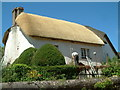 SS7701 : Thatched Cottage, Coleford, Devon by Robin Lucas