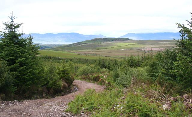 Forestry track near Lough Cummernamuck