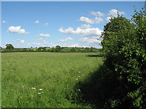 ST6830 : Field adjacent to minor road by William
