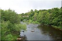 NS7354 : Chatelherault Country Park by Elliott Simpson