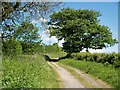 NZ4024 : Footpath to Fulthorpe by Stephen McCulloch