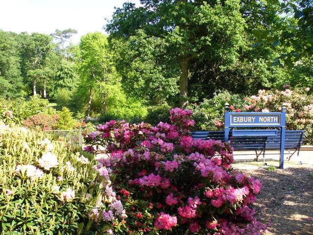 American Garden, Exbury by Colin Smith