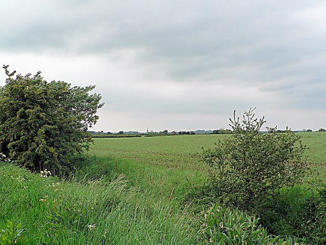 Stewton